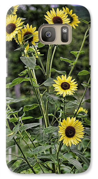Galaxy Case featuring the photograph Bright Sunflowers by Denise Romano
