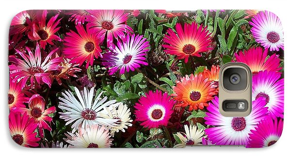 Galaxy Case featuring the photograph Brilliant Flowers by Chalet Roome-Rigdon