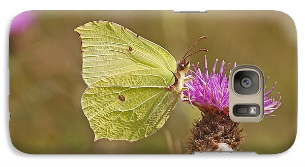 Galaxy Case featuring the photograph Brimstone On Creeping Thistle by Paul Scoullar