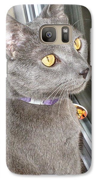 Galaxy Case featuring the photograph Brique Watching The Snow Fall by Philomena Zito