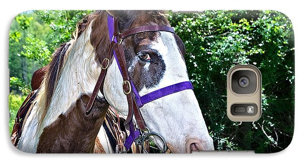 Galaxy Case featuring the photograph Brown And White Horse by Susan Leggett