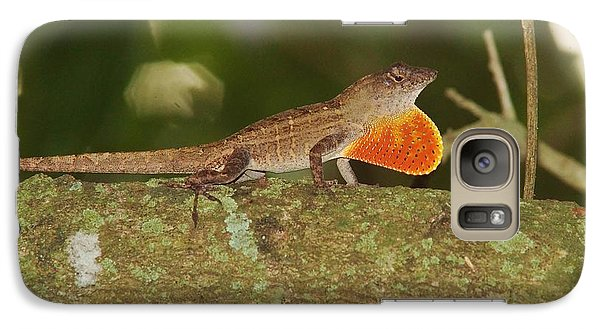 Galaxy Case featuring the photograph Brown Anole Splendor by Lynda Dawson-Youngclaus