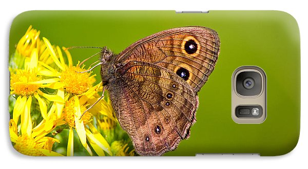Galaxy Case featuring the photograph Brown Butterfly by Adria Trail