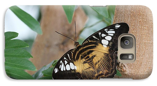 Galaxy Case featuring the photograph Brown Clipper Butterfly #5 by Judy Whitton
