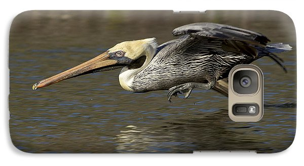Galaxy Case featuring the photograph Brown Pelican Fishing Photo by Meg Rousher