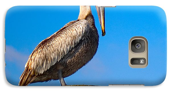 Galaxy Case featuring the photograph Brown Pelican - Pelecanus Occidentalis by Carsten Reisinger
