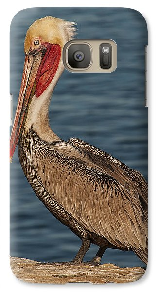 Galaxy Case featuring the photograph Brown Pelican Portrait 2 by Lee Kirchhevel