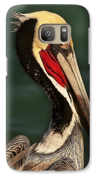 Galaxy Case featuring the photograph Brown Pelican Portrait by Lee Kirchhevel