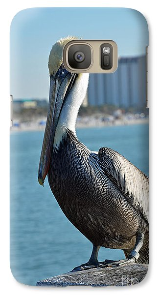 Galaxy Case featuring the photograph Brown Pelican by Robert Meanor