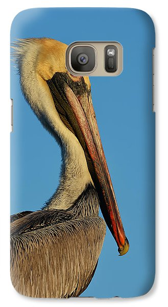 Galaxy Case featuring the photograph Brown Pelican by Susan D Moody