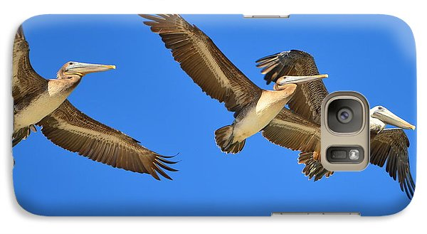 Galaxy Case featuring the photograph Brown Pelicans In Flight by Debra Martz