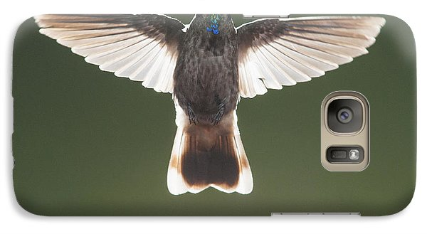 Galaxy Case featuring the photograph Brown Violet-ear Hummingbird by Dan Suzio