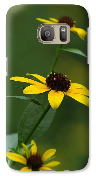 Galaxy Case featuring the photograph Browneyed Susan by Daniel Reed