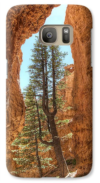 Galaxy Case featuring the photograph Bryce Canyon Trees by Tammy Wetzel