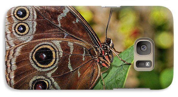 Galaxy Case featuring the photograph Blue Morpho Butterfly by Olga Hamilton