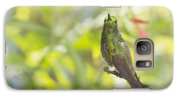 Galaxy Case featuring the photograph Buff-tailed Coronet Hummingbird by Dan Suzio