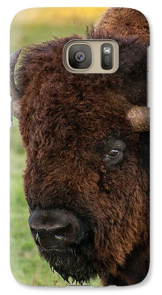 Galaxy Case featuring the photograph Buffalo Portrait by Dawn Romine
