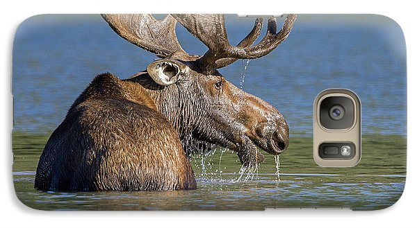 Galaxy Case featuring the photograph Bull Moose At Fishercap by Jack Bell
