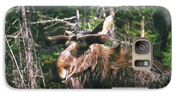 Galaxy Case featuring the photograph Bull Moose In Spring by David Porteus