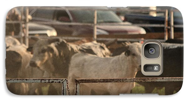 Galaxy Case featuring the photograph Bulls by Denise Romano