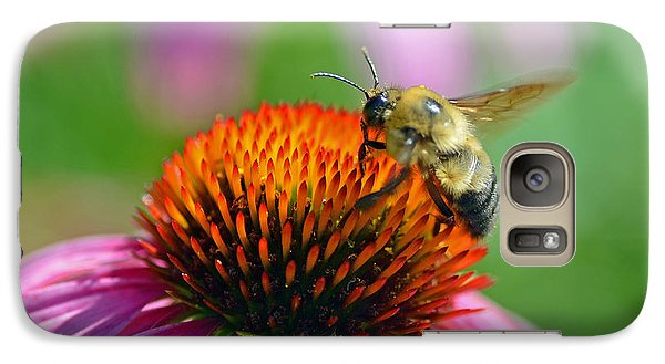 Galaxy Case featuring the photograph Bumblebee On A Coneflower by Rodney Campbell