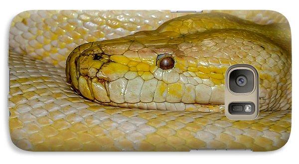 Burmese Python Galaxy S7 Case by Ernie Echols