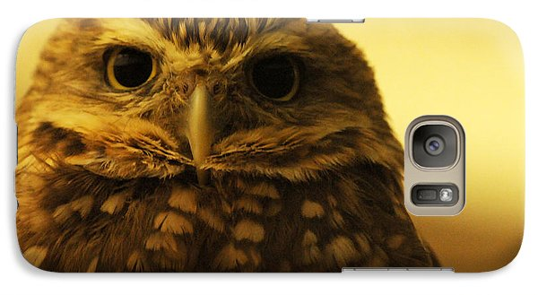 Galaxy Case featuring the photograph Burrowing Owl by Olivia Hardwicke