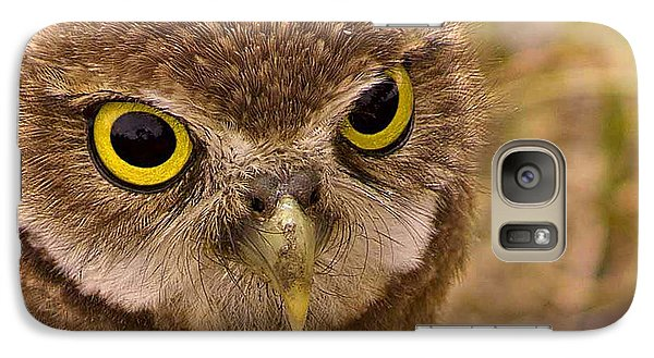 Galaxy Case featuring the photograph Burrowing Owl Portrait by Anne Rodkin