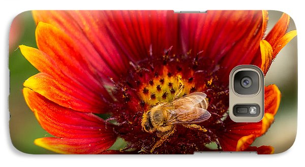 Galaxy Case featuring the photograph Burst Of Color by Kathleen Scanlan