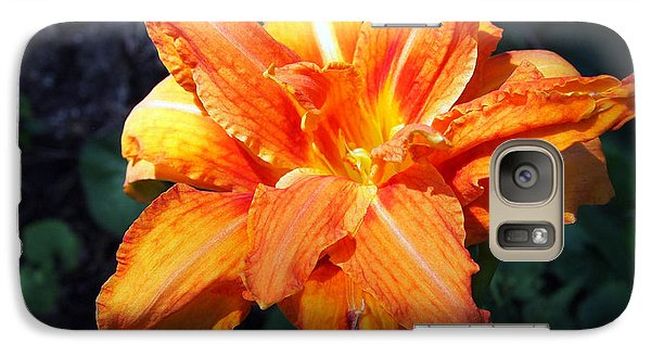 Galaxy Case featuring the photograph Burst Of Orange In The Garden by Deborah Fay