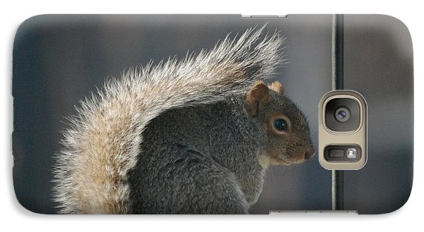Galaxy Case featuring the photograph Bushy Tail by Mark McReynolds