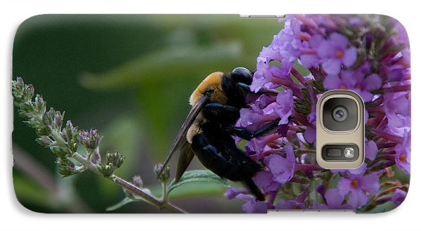 Galaxy Case featuring the photograph Busy Bee by Greg Graham