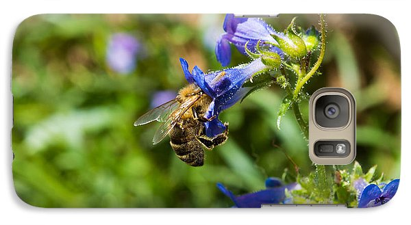 Galaxy Case featuring the photograph Busy Bee by Rhys Arithson