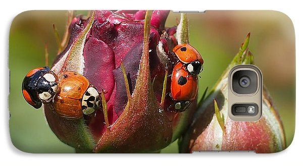 Busy Ladybugs Galaxy S7 Case