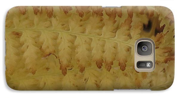 Galaxy Case featuring the photograph Butter Ferns by Aurora Levins Morales