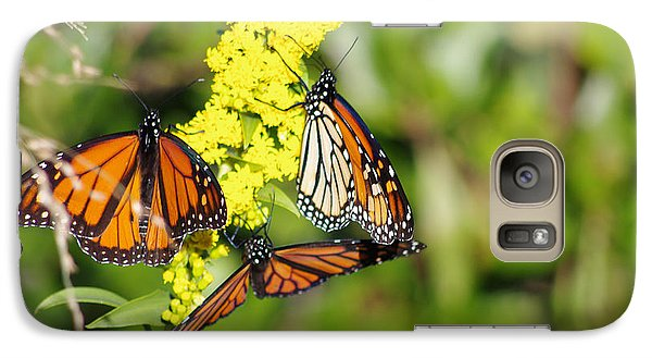 Galaxy Case featuring the photograph Butterflies Abound by Greg Graham
