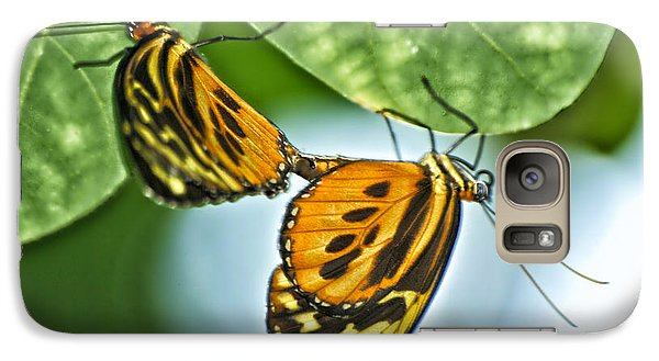 Galaxy Case featuring the photograph Butterflies Mating by Thomas Woolworth