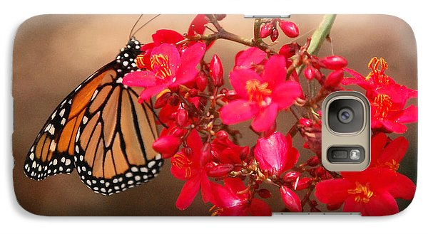 Galaxy Case featuring the photograph Butterfly 1 by Leticia Latocki