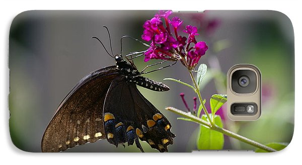 Galaxy Case featuring the photograph Butterfly 1 by Tannis  Baldwin