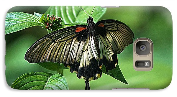 Galaxy Case featuring the photograph Butterfly 2 by Kathy Churchman