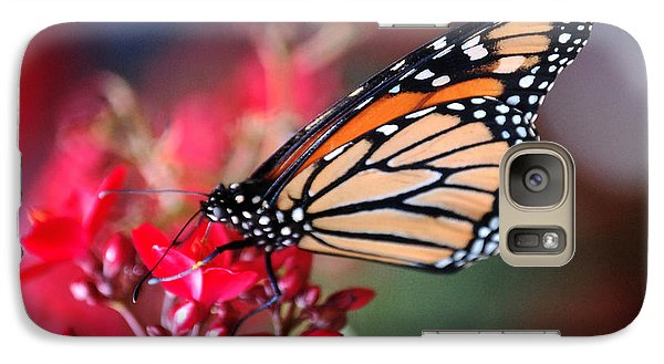 Galaxy Case featuring the photograph Butterfly 2 by Leticia Latocki