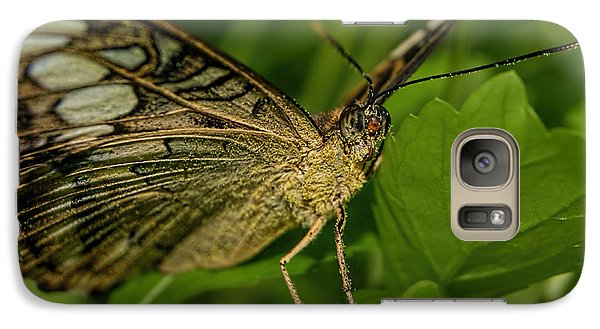 Galaxy Case featuring the photograph Butterfly 2 by Olga Hamilton