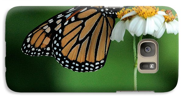 Galaxy Case featuring the photograph Butterfly 3 by Leticia Latocki