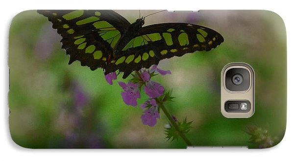 Galaxy Case featuring the photograph Butterfly 4 by Leticia Latocki