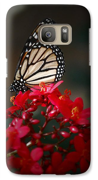 Galaxy Case featuring the photograph Butterfly 6 by Leticia Latocki