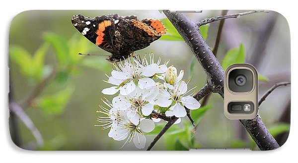 Galaxy Case featuring the photograph Butterfly And Apple Blossoms by Penny Meyers