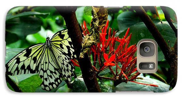 Galaxy Case featuring the photograph Butterfly And Blossom by Karen Molenaar Terrell