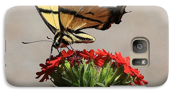 Galaxy Case featuring the photograph Butterfly And Maltese Cross 1 by Aaron Aldrich