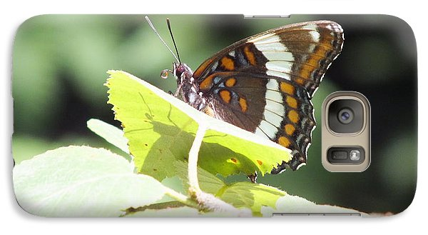 Galaxy Case featuring the photograph Butterfly And Shadow by Gene Cyr