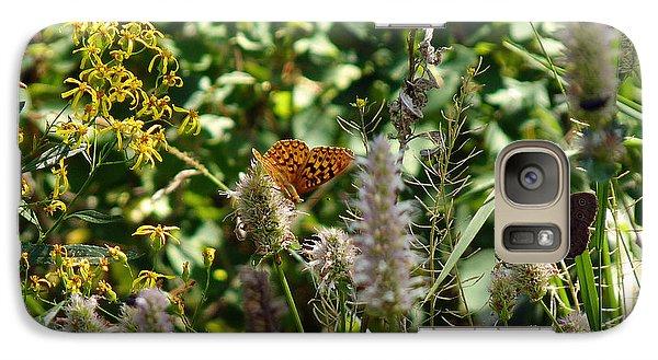 Galaxy Case featuring the photograph Butterfly Buffet by Meghan at FireBonnet Art